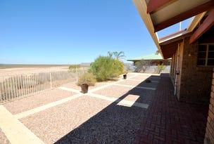 20 Harcus Place, Port Augusta West, SA 5700