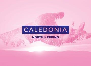 Caledonia Wollert