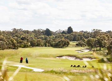 Botanic Ridge Botanic Ridge