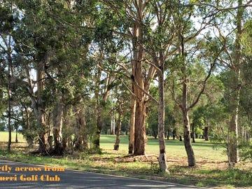 Lot 109 Avery's Lane, Heddon Greta, NSW 2321