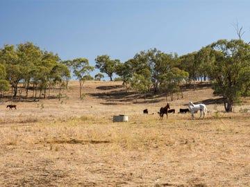 Lot 7 Warrah Park Lane, Willow Tree, NSW 2339