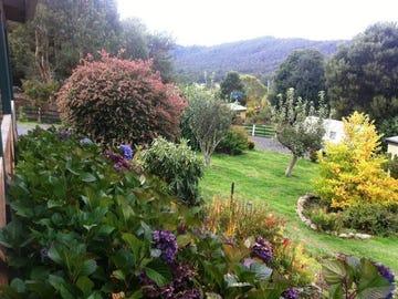 239 Lottah Road, Goulds Country, Tas 7216