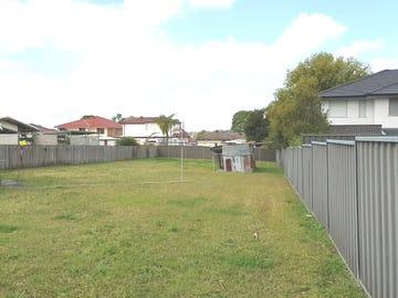 41 Lyton Street, Blacktown, NSW 2148