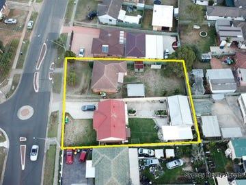 20 & 22 Heckenberg Avenue, Busby, NSW 2168