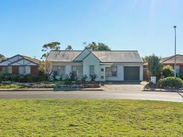 20 Wilkinson Court, Enfield, SA 5085