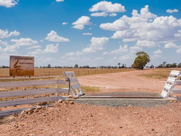 795 Younga Plains Road, West Wyalong, NSW 2671