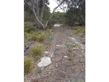Lot 245, Arafura Avenue, Island Beach, SA 5222