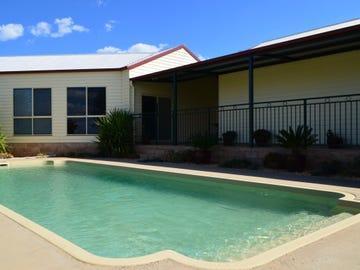 91 Carrawobitty Lane, Forbes, NSW 2871