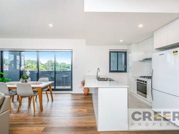 202/11 Fern Street, Islington, NSW 2296
