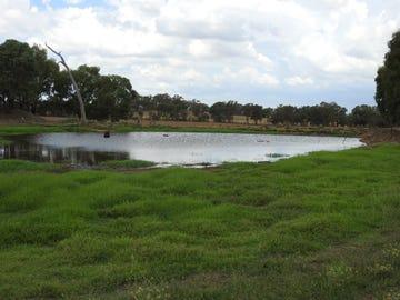 655 Stapletons Road, Molong via, Orange, NSW 2800