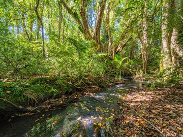 536 The Pocket Road, The Pocket, NSW 2483