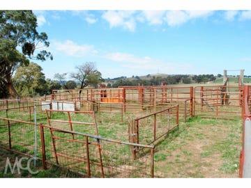 Lot 100 Emu Swamp Road, Orange, NSW 2800