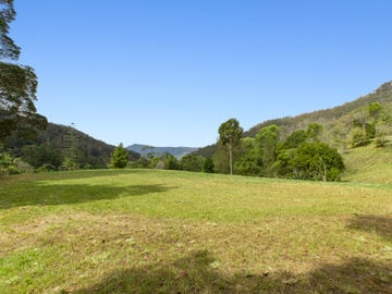 501 Mount Warning Road, Mount Warning, NSW 2484