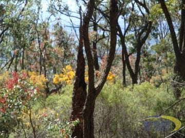 Lot 118 Coolawine Trail, Broke, NSW 2330