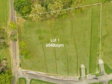 Lot 1, 175 Paynters Creek Road, Rosemount, Qld 4560