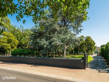 13 Robe Terrace, Medindie, SA 5081