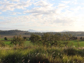 1079 Christmas Creek Rd, Christmas Creek, Qld 4285