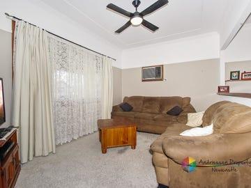 1 Helen Street, Mount Hutton, NSW 2290