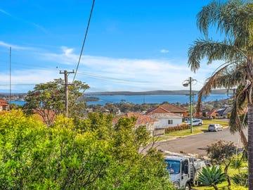 36 Minnegang Street, Warrawong, NSW 2502