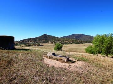 551 Sandy Creek Road, McCullys Gap, NSW 2333
