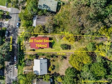 30 Todd Street, Taringa, Qld 4068