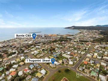 1 Truganini Street, Montello, Tas 7320