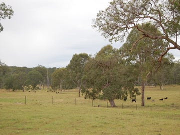 223 Peckhams Road, Ewingar, NSW 2469