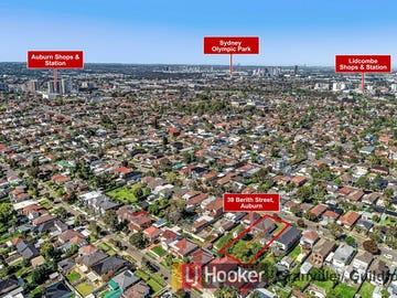 39 Berith Street, Auburn, NSW 2144