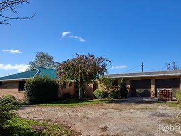 20 Racecourse Road, Winnaleah, Tas 7265
