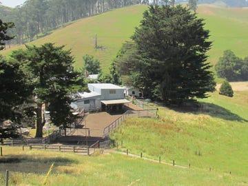 369 Ferndale Strzelecki Road, Ferndale, Vic 3821