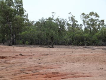 Wee Warra, Walgett, NSW 2832