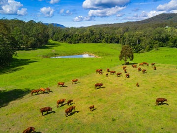 947 Pipeclay Road, Pipeclay, NSW 2446