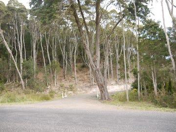 Lot 1 Pegarah Road, Naracoopa, Tas 7256