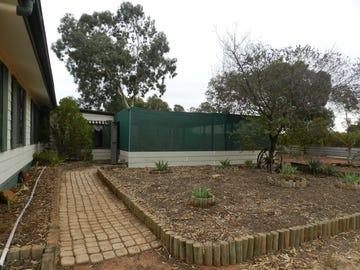 40 Wilkinson Road, Loveday, SA 5345