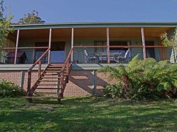 456 Cygnet Coast Road, Petcheys Bay, Tas 7109