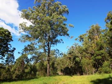 Barry's Bridge Road, Pillar Valley, NSW 2462
