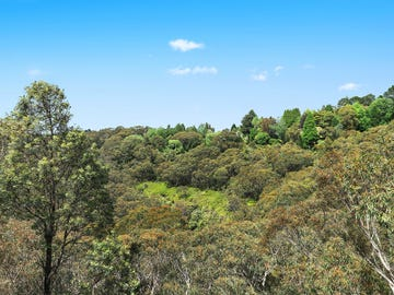49 Henderson Road, Wentworth Falls, NSW 2782