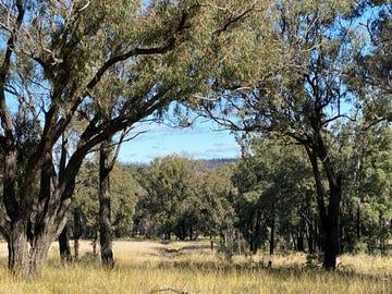 550 Cainbil Road, Coolah, NSW 2843