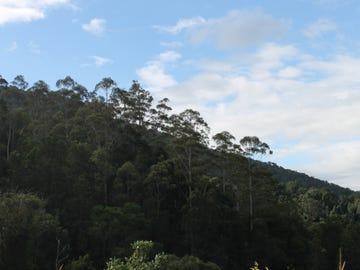 2 MOUNT WARNING ROAD, Mount Warning, NSW 2484