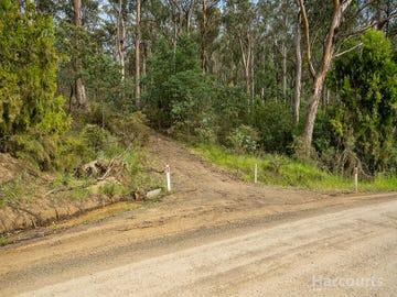 Lot 1 Nugent Road, Wattle Hill, Tas 7172