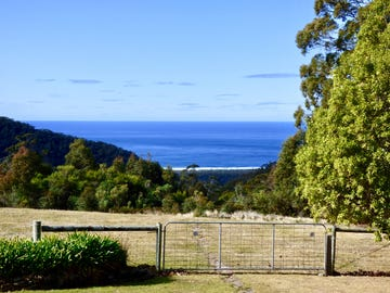 1025 Elephant Pass Road, Gray, Tas 7215