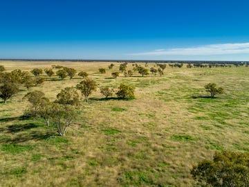 'Taralga' 13475 Mitchell Hwy, Mullengudgery, NSW 2825