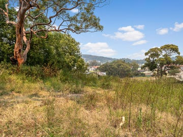 41a Auklet Road, Mount Hutton, NSW 2290