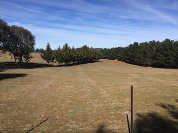 197 Ducks Lane, Goulburn, NSW 2580