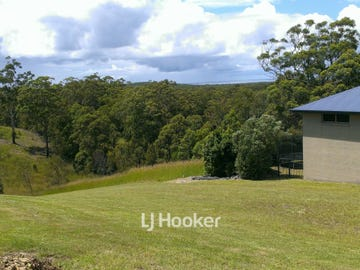 13 Lakeview Way, Tallwoods Village, NSW 2430