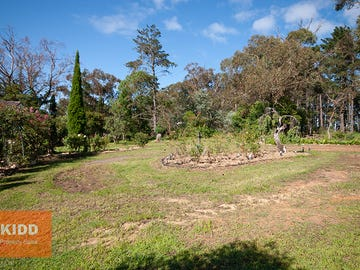 169 Euloo Road, Peats Ridge, NSW 2250