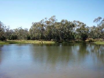 Coolabah, Coolabah, NSW 2831