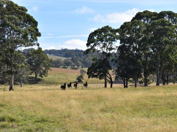 207 Sheepstation Forest Road, Oberon, NSW 2787