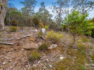 214 Top Swamp Road, Lachlan, Tas 7140