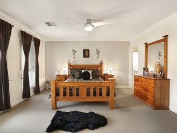 17 Shrike Place, Hewett, SA 5118